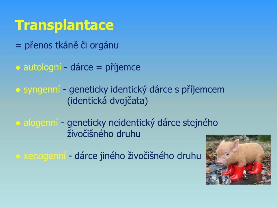 Transplantace = přenos tkáně či orgánu ● autologní - dárce = příjemce ● syngenní - geneticky identický dárce s příjemcem (identická dvojčata) ● alogenní - geneticky neidentický dárce stejného živočišného druhu ● xenogenní - dárce jiného živočišného druhu