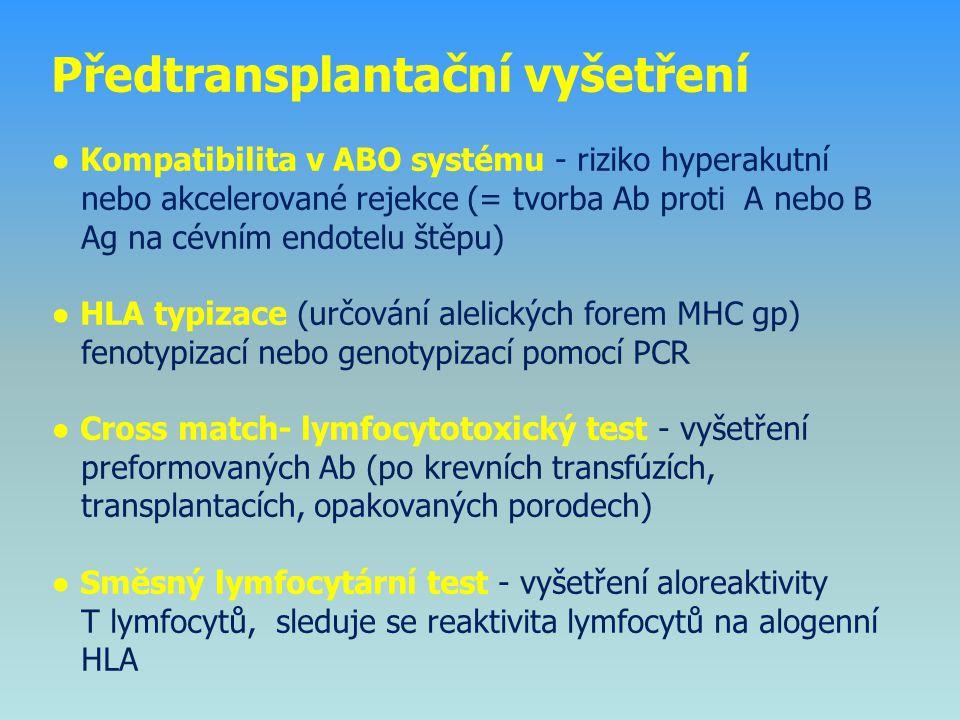 Předtransplantační vyšetření ● Kompatibilita v ABO systému - riziko hyperakutní nebo akcelerované rejekce (= tvorba Ab proti A nebo B Ag na cévním endotelu štěpu) ● HLA typizace (určování alelických forem MHC gp) fenotypizací nebo genotypizací pomocí PCR ● Cross match- lymfocytotoxický test - vyšetření preformovaných Ab (po krevních transfúzích, transplantacích, opakovaných porodech) ● Směsný lymfocytární test - vyšetření aloreaktivity T lymfocytů, sleduje se reaktivita lymfocytů na alogenní HLA