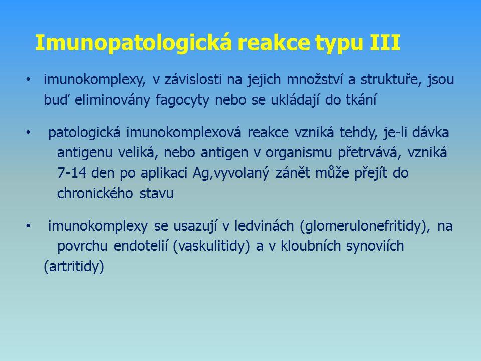 Imunopatologická reakce typu III