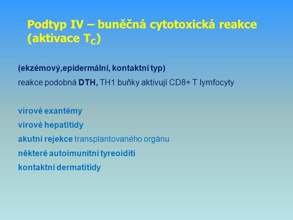 Podtyp IV – buněčná cytotoxická reakce (aktivace TC)