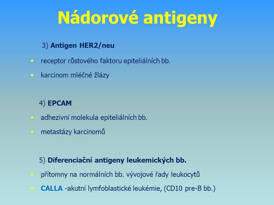 Nádorové antigeny 3) Antigen HER2/neu