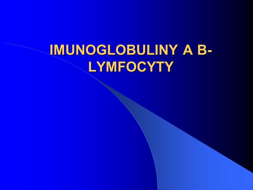 IMUNOGLOBULINY A B-LYMFOCYTY