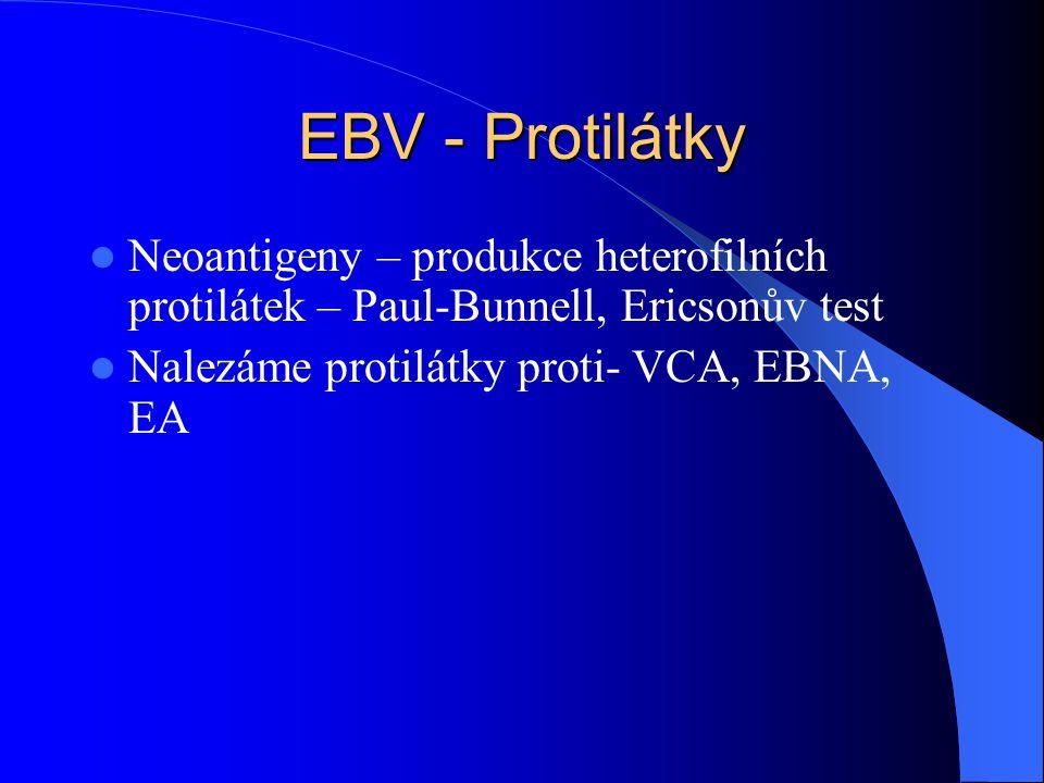 EBV - Protilátky Neoantigeny – produkce heterofilních protilátek – Paul-Bunnell, Ericsonův test.