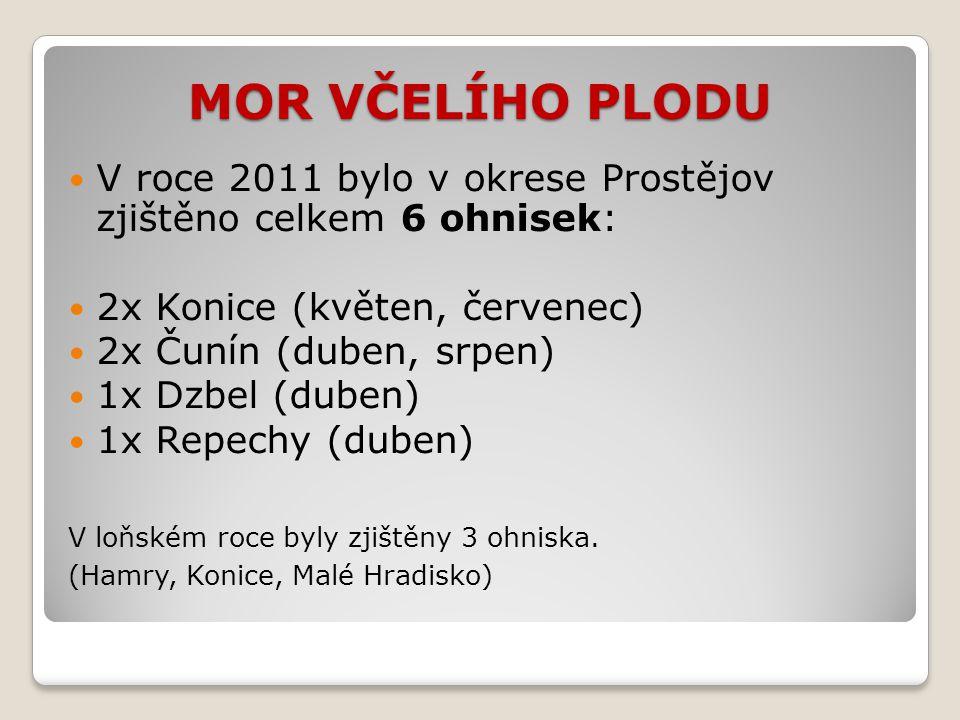 MOR VČELÍHO PLODU V roce 2011 bylo v okrese Prostějov zjištěno celkem 6 ohnisek: 2x Konice (květen, červenec)