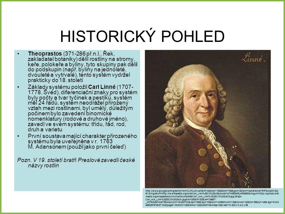 HISTORICKÝ POHLED