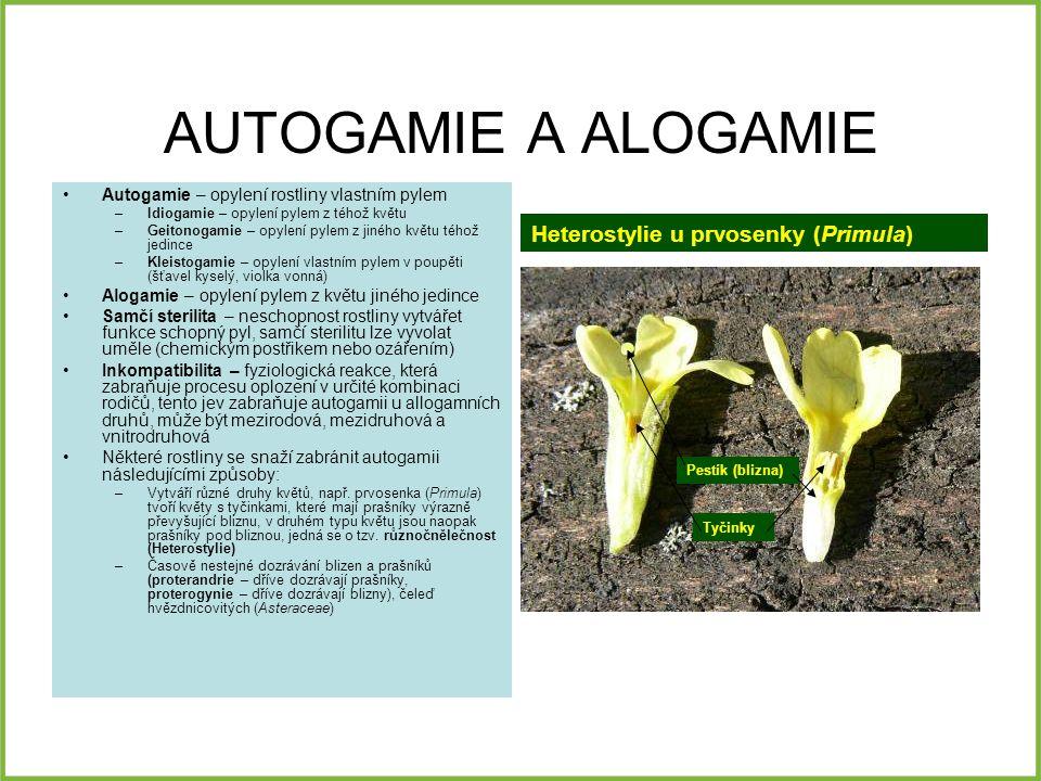 AUTOGAMIE A ALOGAMIE Heterostylie u prvosenky (Primula)
