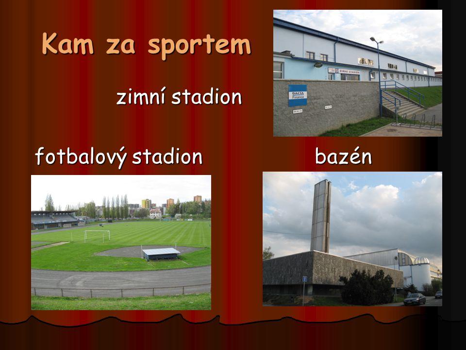 Kam za sportem zimní stadion fotbalový stadion bazén