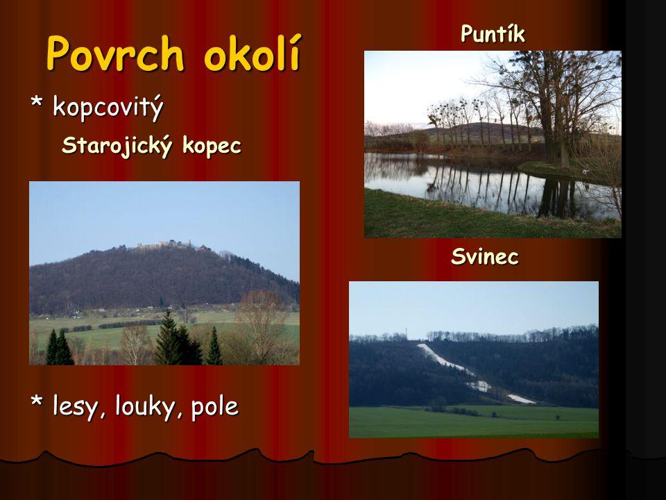 Povrch okolí Puntík * kopcovitý Starojický kopec * lesy, louky, pole