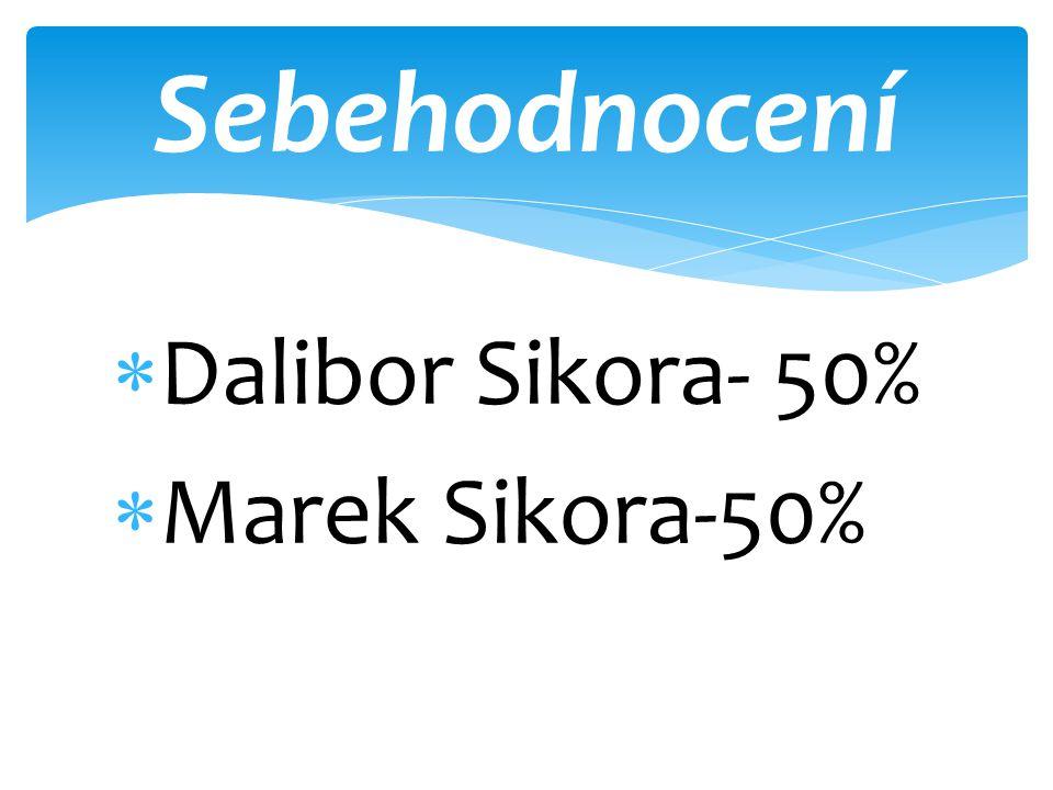 Sebehodnocení Dalibor Sikora- 50% Marek Sikora-50%