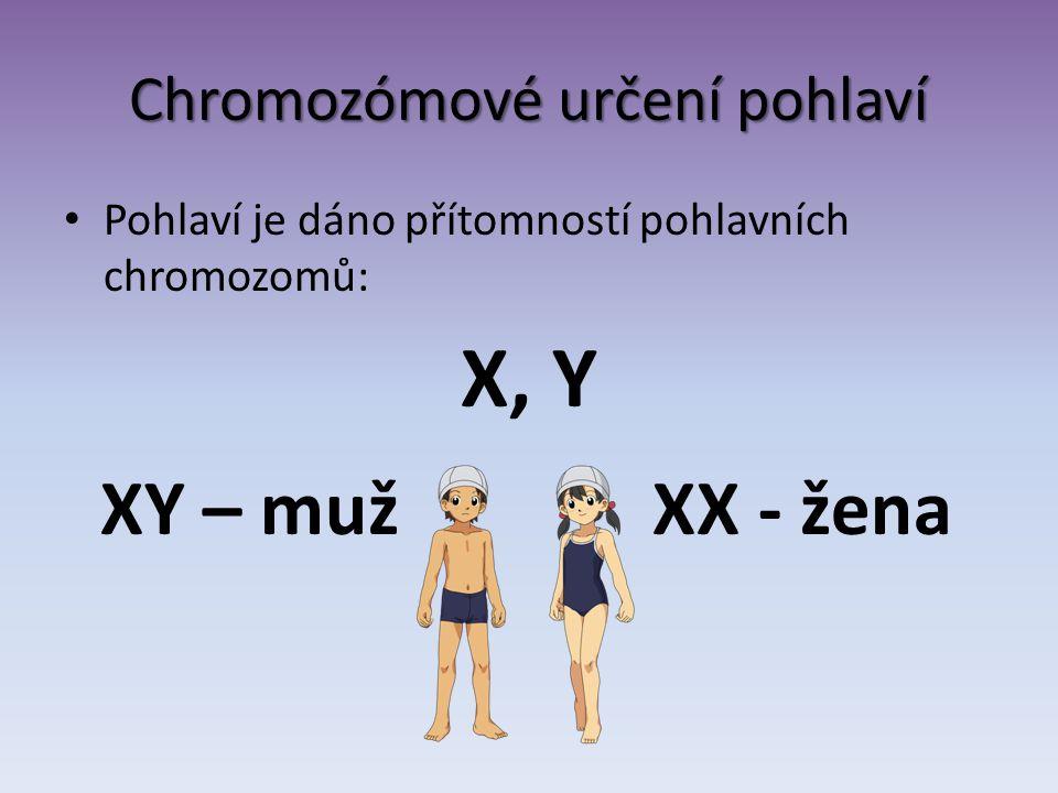 Chromozómové určení pohlaví