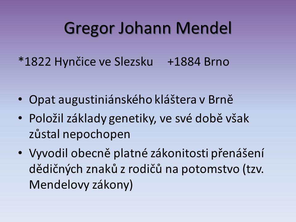 Gregor Johann Mendel *1822 Hynčice ve Slezsku +1884 Brno