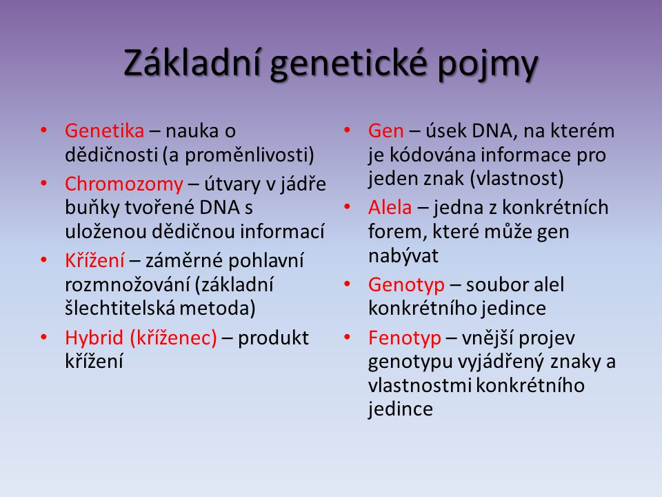 Základní genetické pojmy