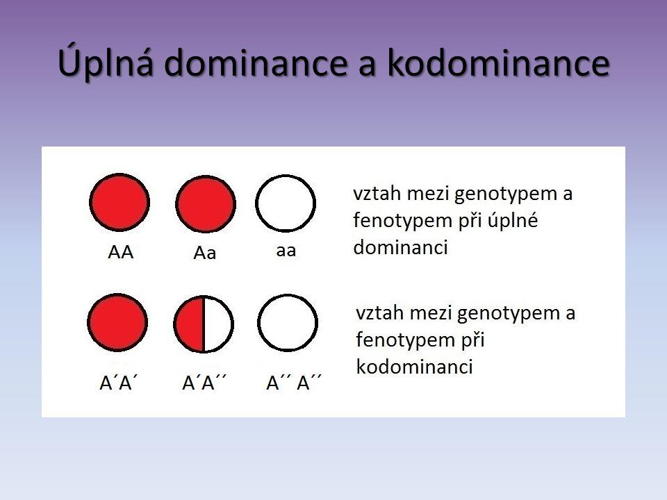 Úplná dominance a kodominance