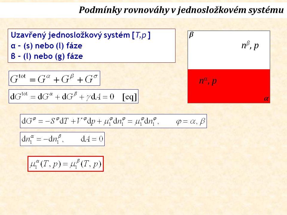 Podmínky rovnováhy v jednosložkovém systému