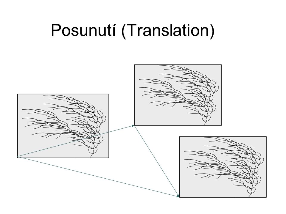 Posunutí (Translation)