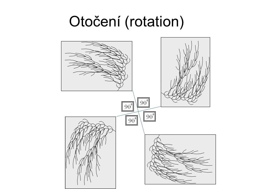 Otočení (rotation)