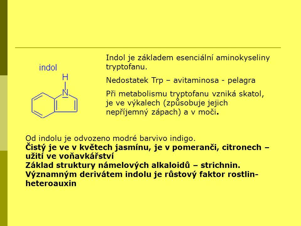 Indol je základem esenciální aminokyseliny tryptofanu.