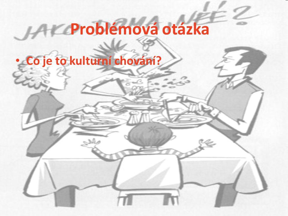 Problémová otázka Co je to kulturní chování