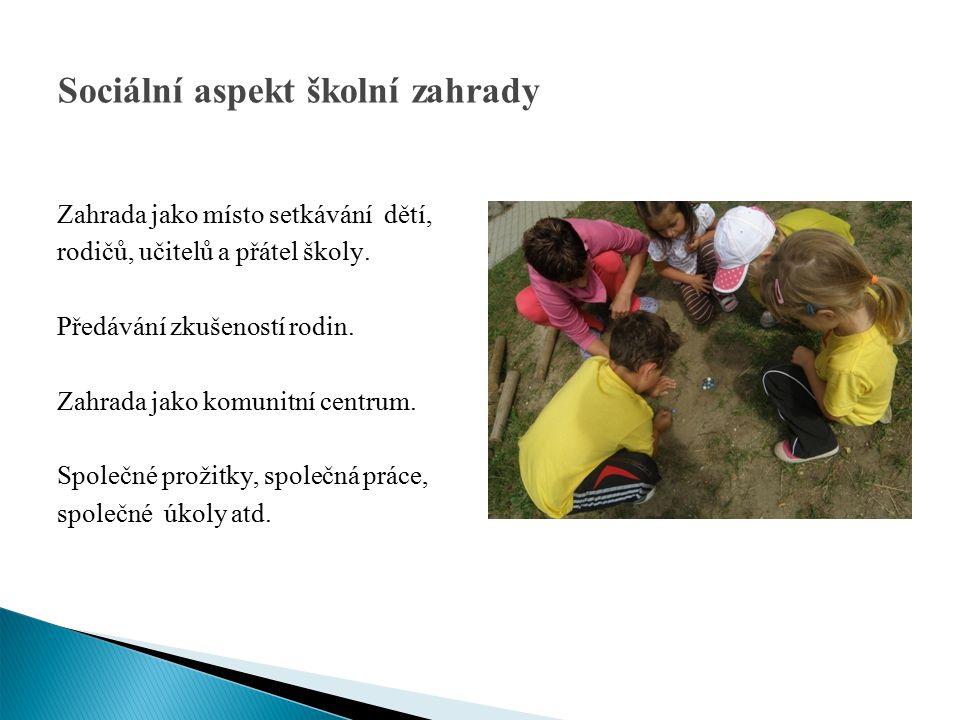 Sociální aspekt školní zahrady