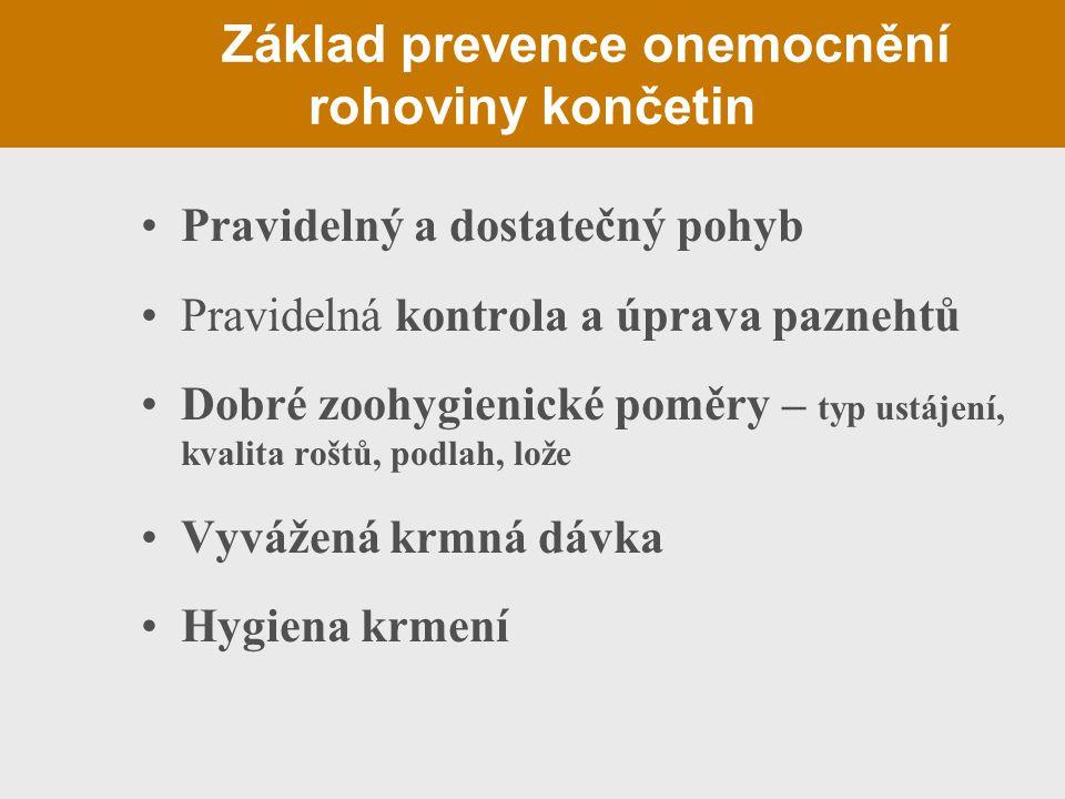 Základ prevence onemocnění rohoviny končetin