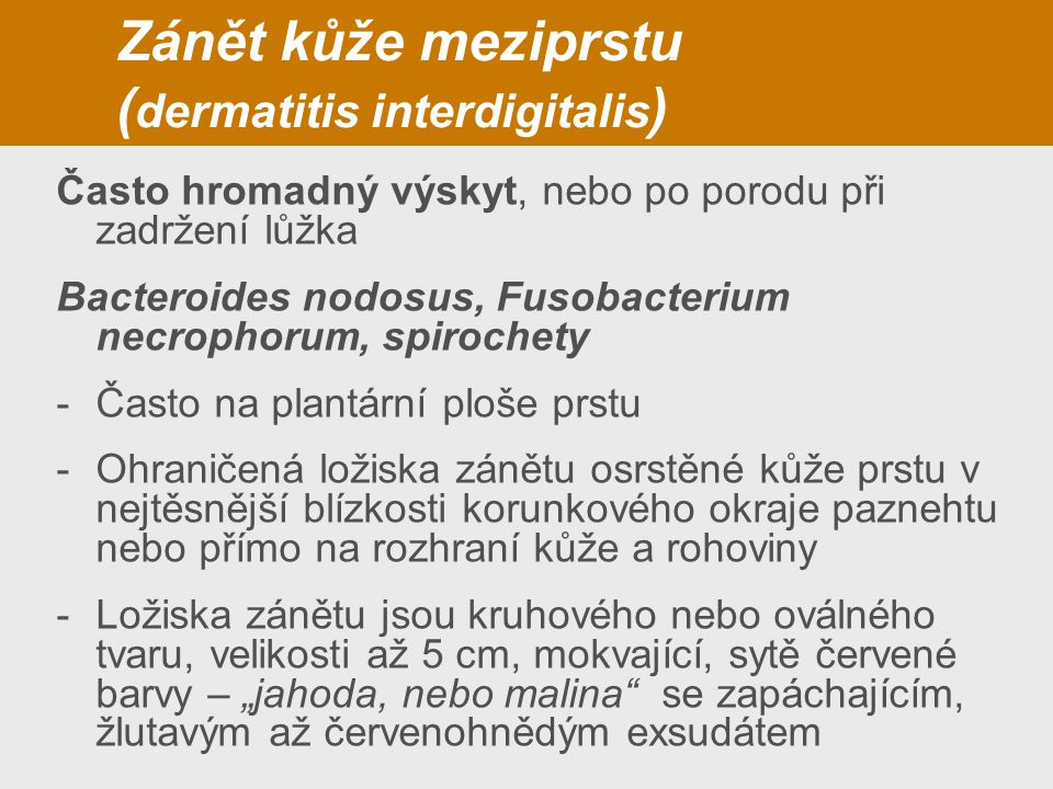 Zánět kůže meziprstu (dermatitis interdigitalis)