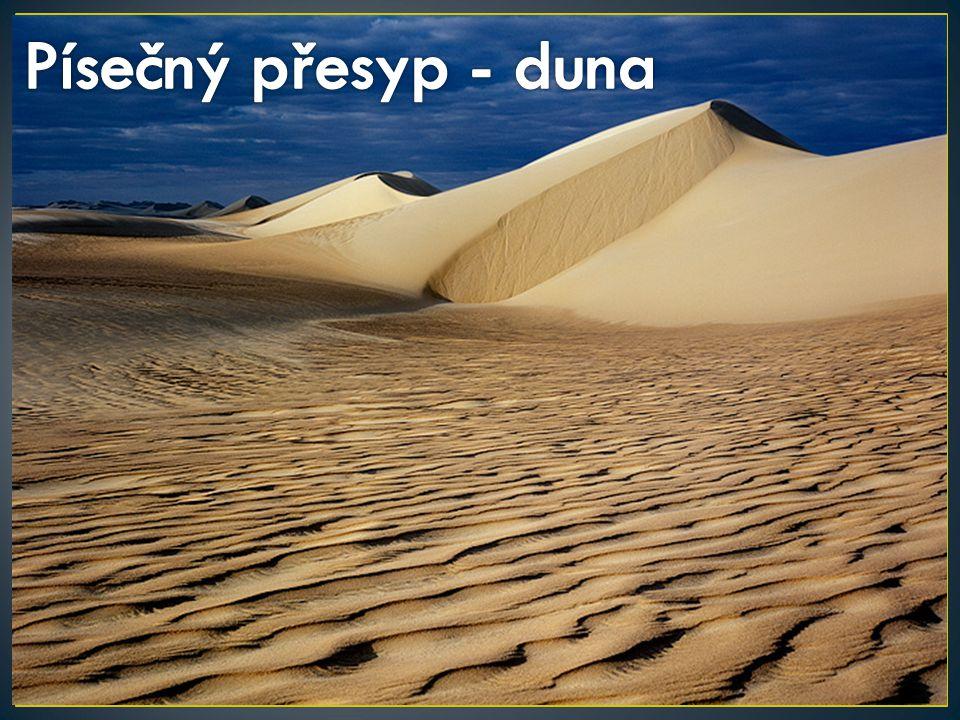 Písečný přesyp - duna