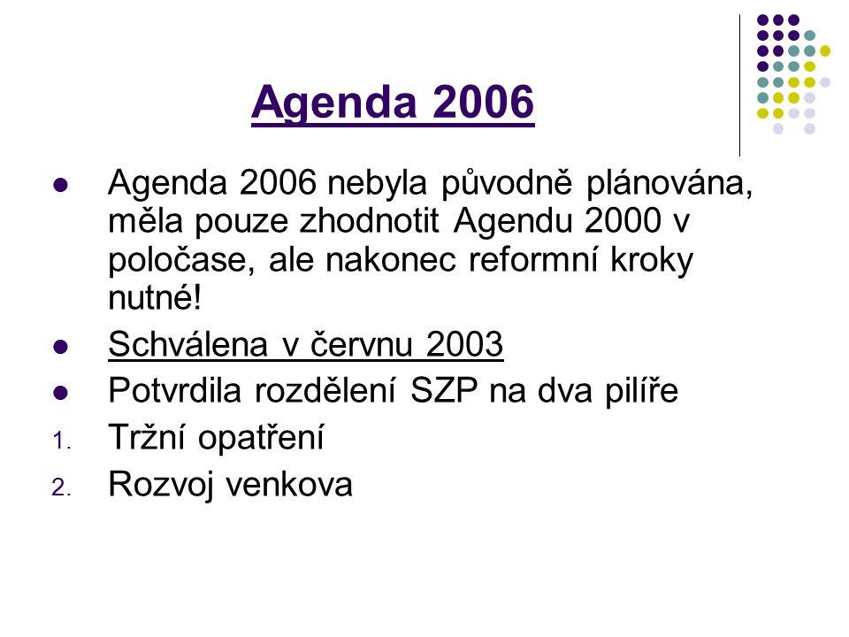 Agenda 2006 Agenda 2006 nebyla původně plánována, měla pouze zhodnotit Agendu 2000 v poločase, ale nakonec reformní kroky nutné!