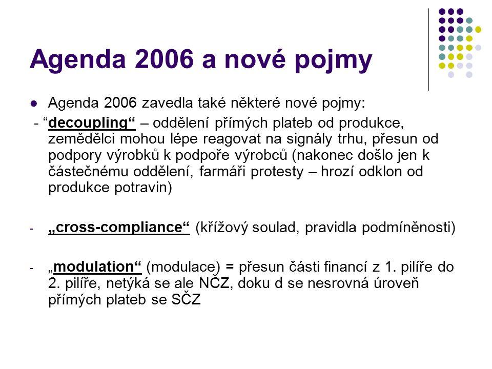 Agenda 2006 a nové pojmy Agenda 2006 zavedla také některé nové pojmy: