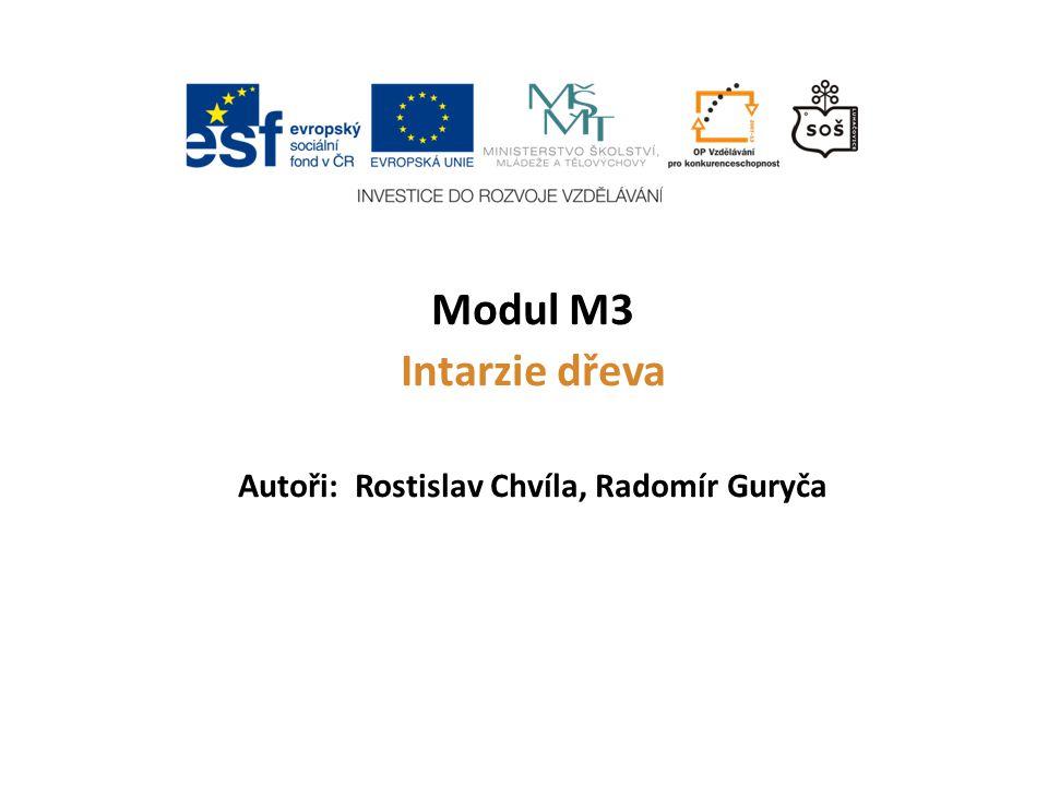 Autoři: Rostislav Chvíla, Radomír Guryča