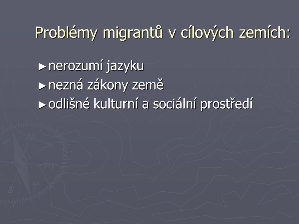 Problémy migrantů v cílových zemích: