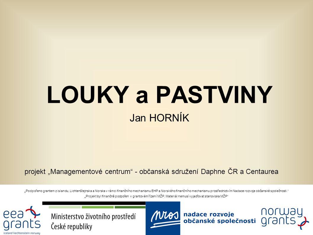 LOUKY a PASTVINY Jan HORNÍK