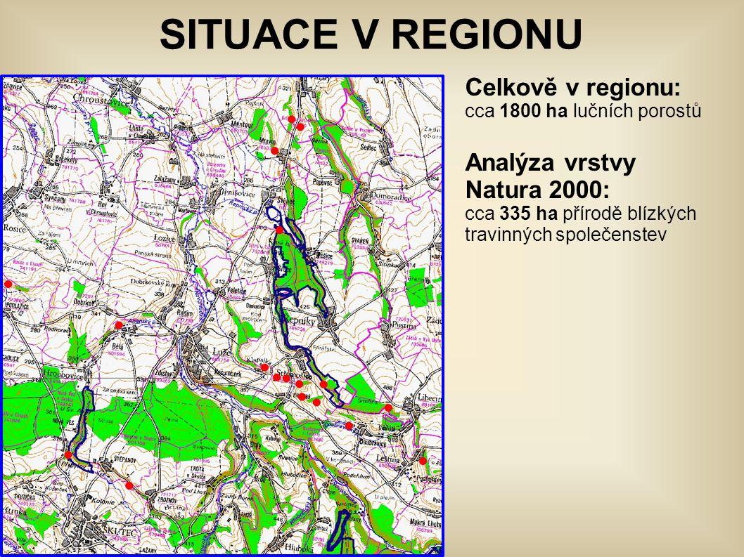 SITUACE V REGIONU Celkově v regionu: cca 1800 ha lučních porostů Analýza vrstvy Natura 2000: cca 335 ha přírodě blízkých travinných společenstev.