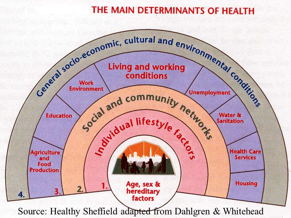 Source: Healthy Sheffield adapted from Dahlgren & Whitehead