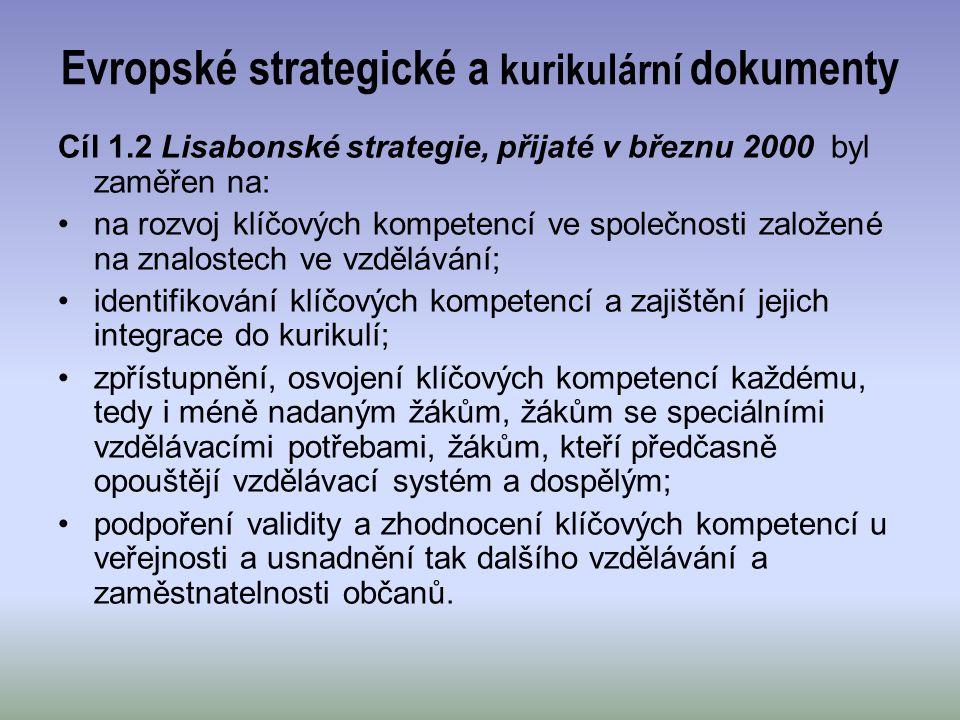 Evropské strategické a kurikulární dokumenty
