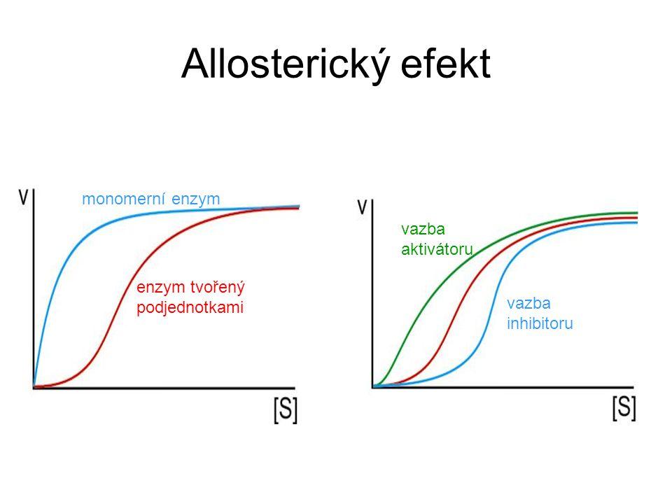 Allosterický efekt monomerní enzym vazba aktivátoru enzym tvořený