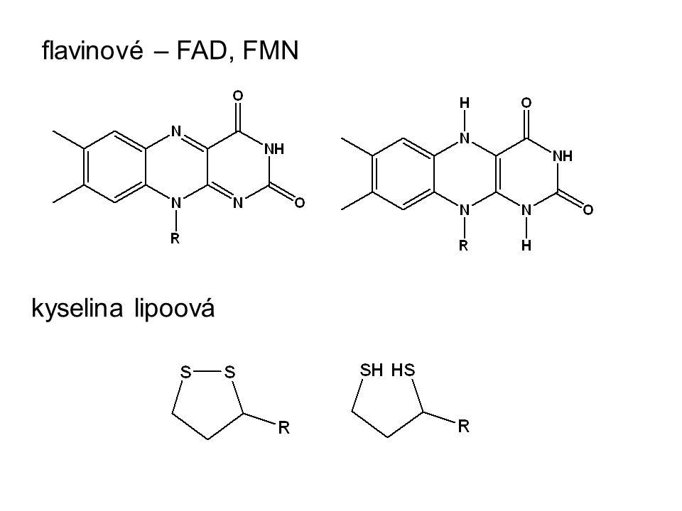 flavinové – FAD, FMN kyselina lipoová