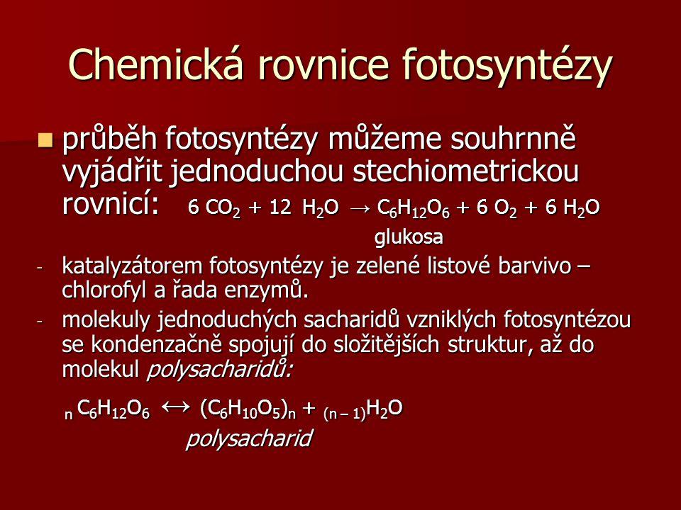 Chemická rovnice fotosyntézy