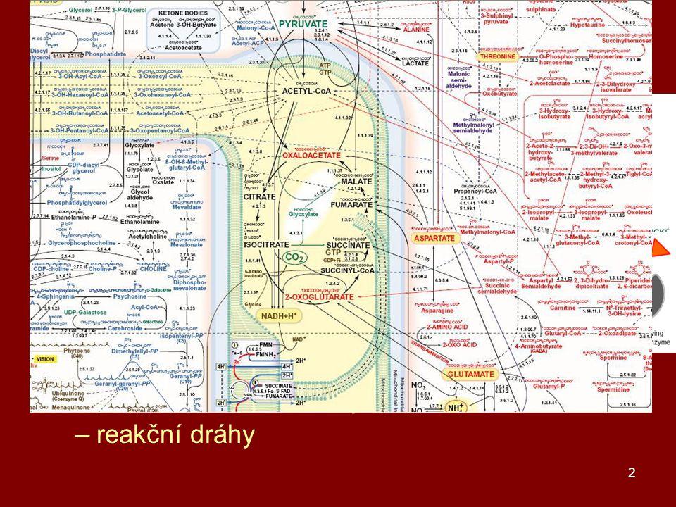 buněčný metabolismus energie a atomy (stavební látky)