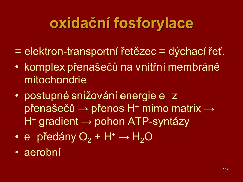 oxidační fosforylace = elektron-transportní řetězec = dýchací řeť.