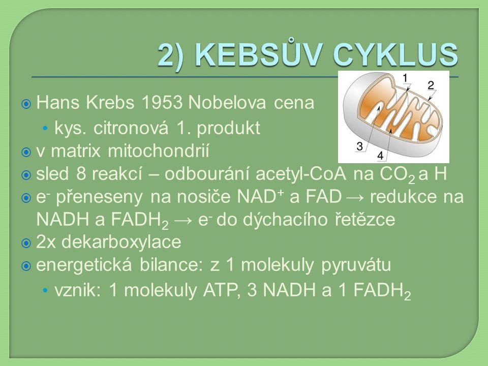 2) KEBSŮV CYKLUS Hans Krebs 1953 Nobelova cena