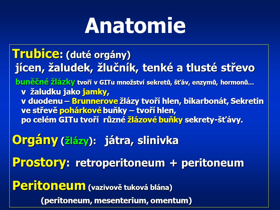 Anatomie Trubice: (duté orgány) Orgány (žlázy): játra, slinivka