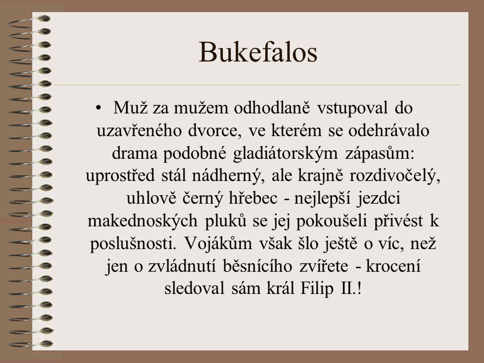 Bukefalos
