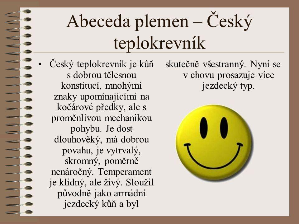 Abeceda plemen – Český teplokrevník