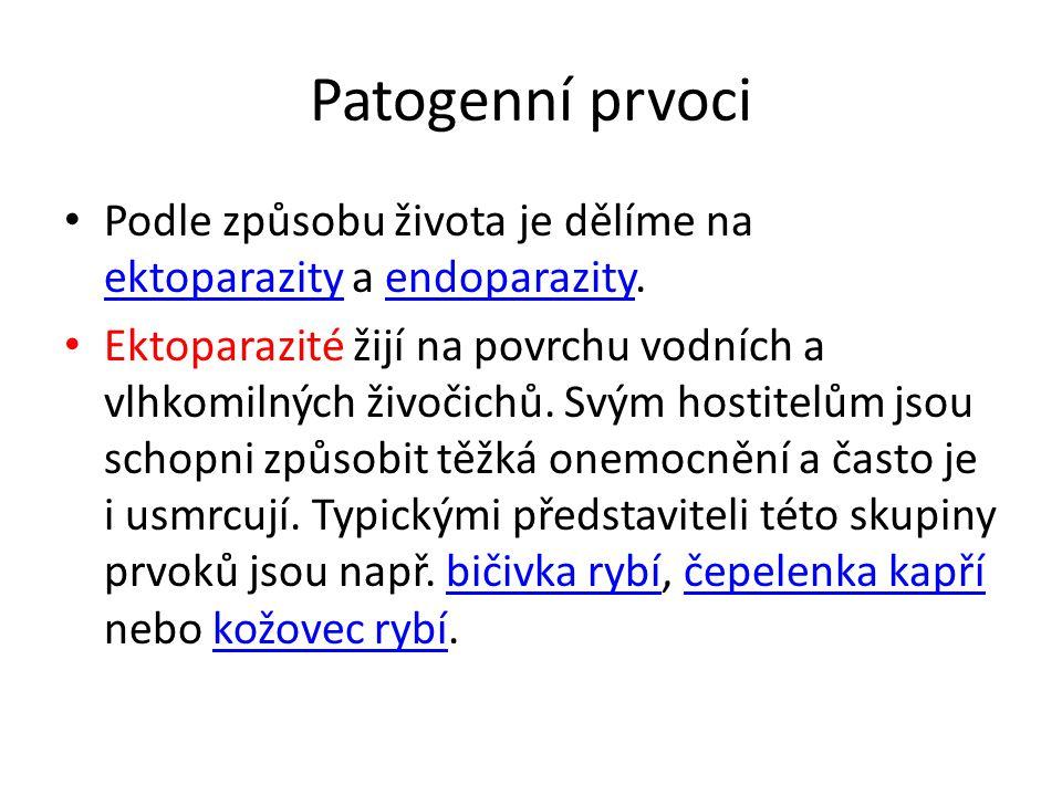 Patogenní prvoci Podle způsobu života je dělíme na ektoparazity a endoparazity.
