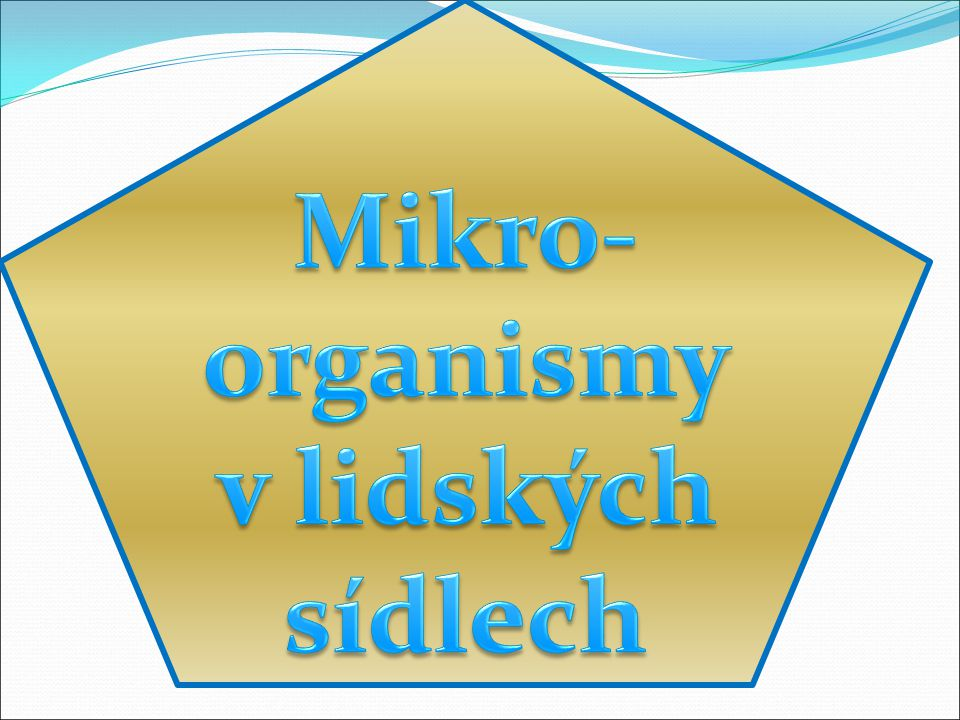 Mikro-organismy v lidských sídlech