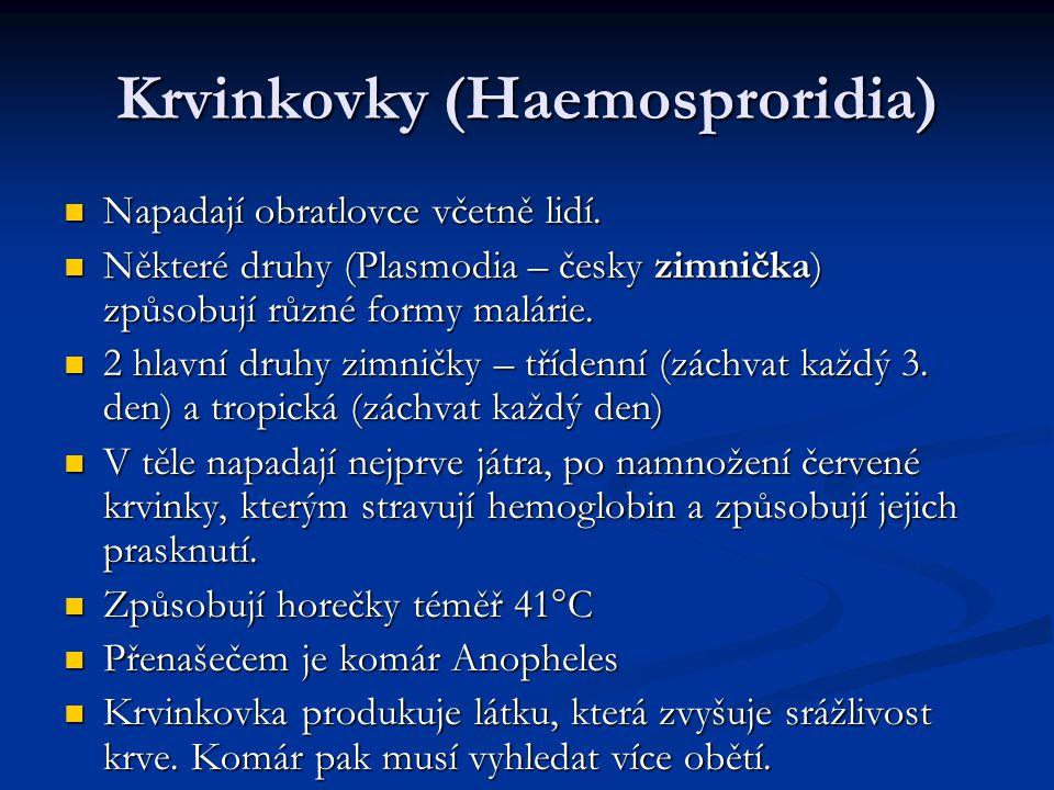 Krvinkovky (Haemosproridia)