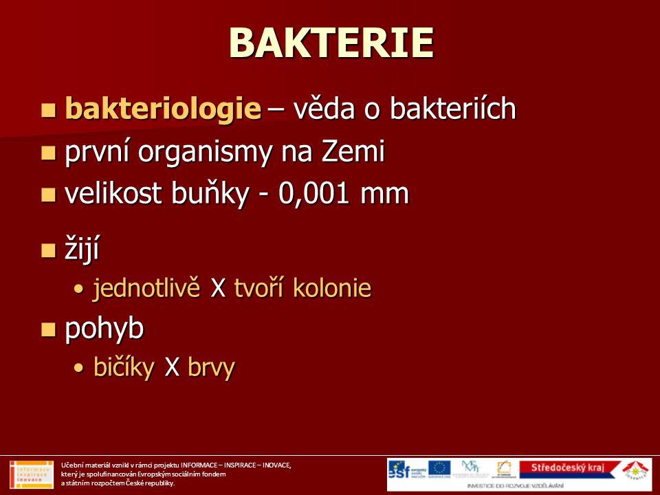 BAKTERIE bakteriologie – věda o bakteriích první organismy na Zemi