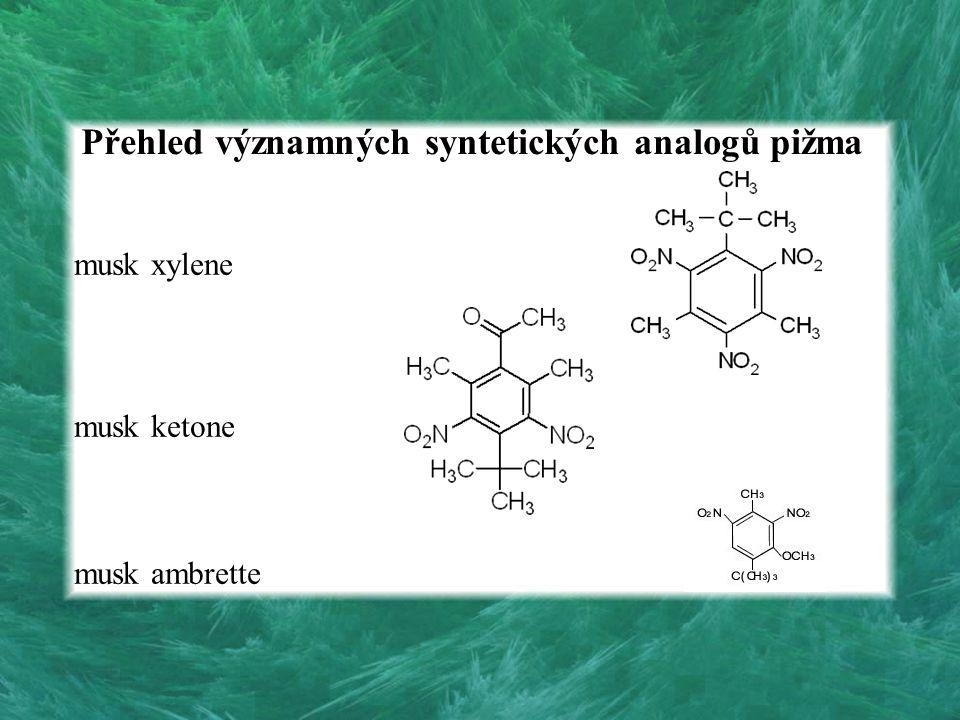 Přehled významných syntetických analogů pižma