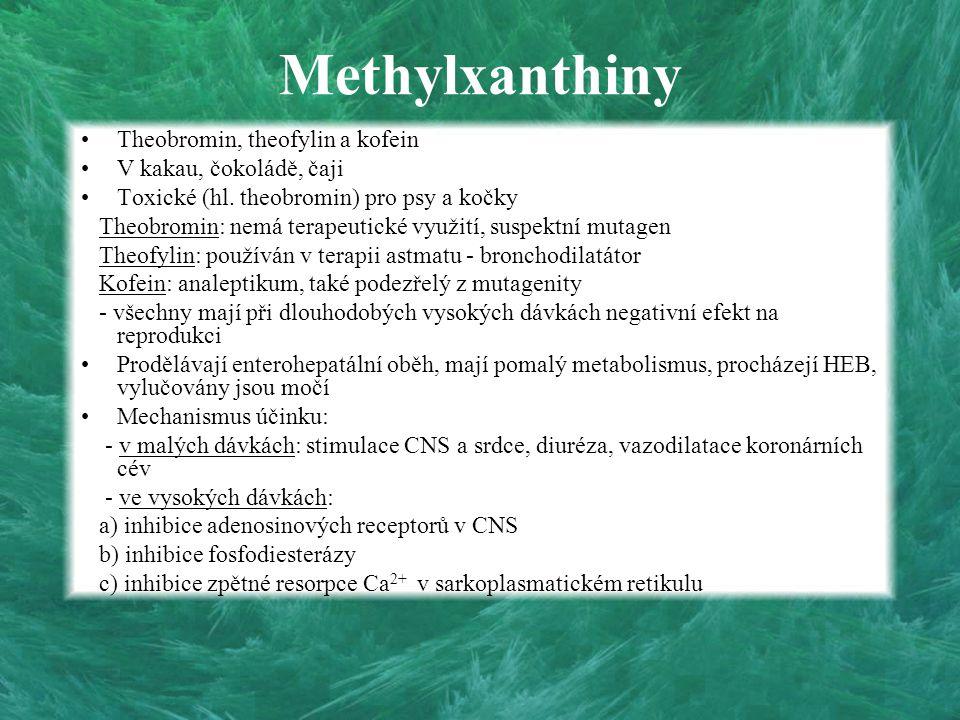 Methylxanthiny Theobromin, theofylin a kofein V kakau, čokoládě, čaji