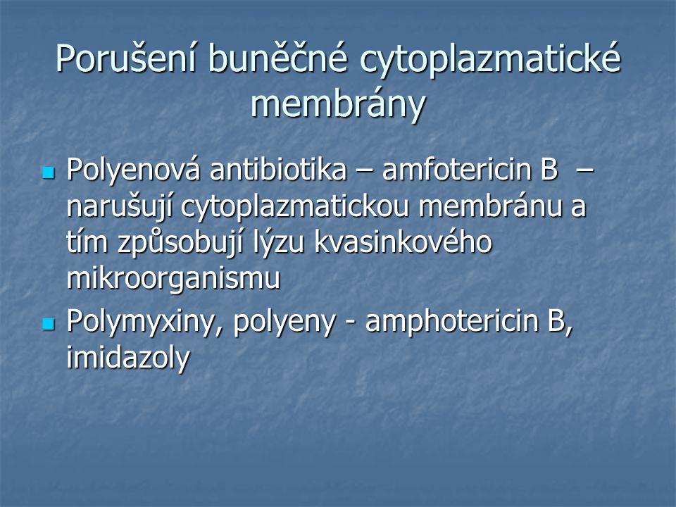 Porušení buněčné cytoplazmatické membrány